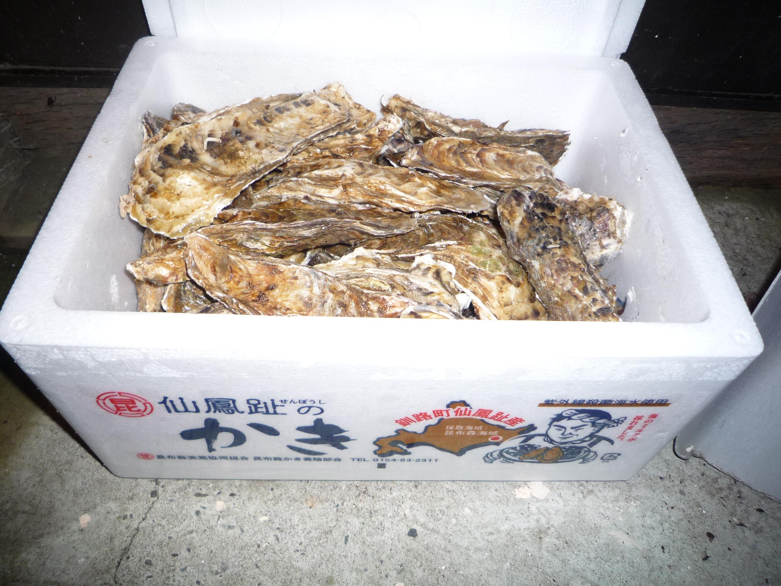 北海道一周記録⑯~カキを大量にもらう~